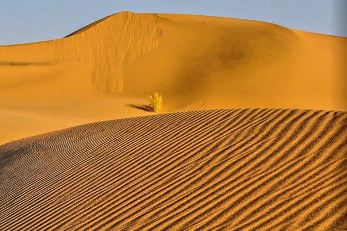 Desert of Iran – 11 Days